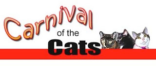 Can't get enough of Carnival of the Cats #470