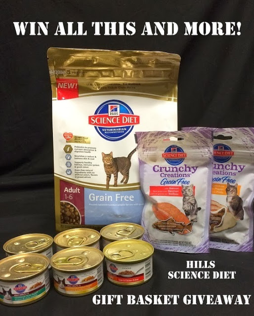 Rascal and Rocco: Cat Food Giveaway #HillsPet