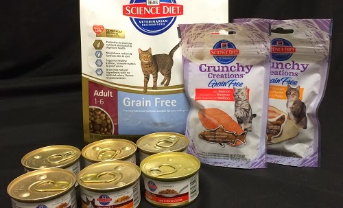 Rascal and Rocco: A Cat Menu and Cat Food Giveaway #HillsPet