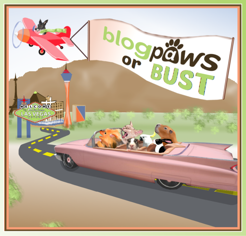 BlogPaws or Bust? Guess We're a Bust