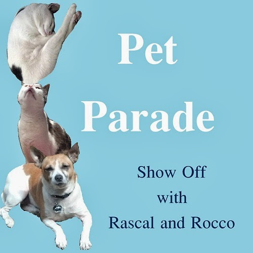 Pet Parade- #PetBloggers grow show off your favorite posts! All posts get pinned