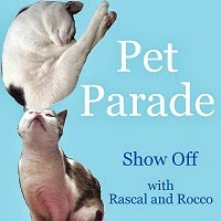 Pet Parade #petbloggers #bloghop with Rascal and Rocco