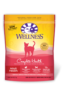 Why Adopt and Adult Cat? #WellnessPetFood #AdoptaCatMonth