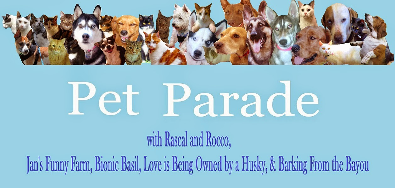 Pet Parade #53 Giveaway