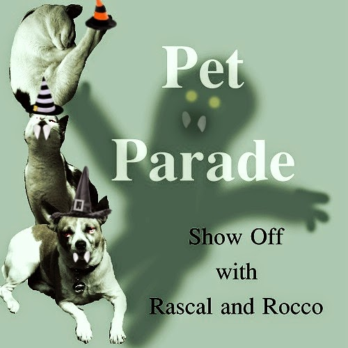 Pet Parade #64 Halloween Edition
