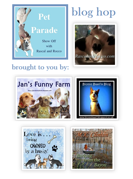 Pet Parade #bloghop for #petbloggers #cats #dogs #pets any #animals