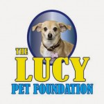 Football Commercial Helps Animals #TheLucyBowl #MondayMatters