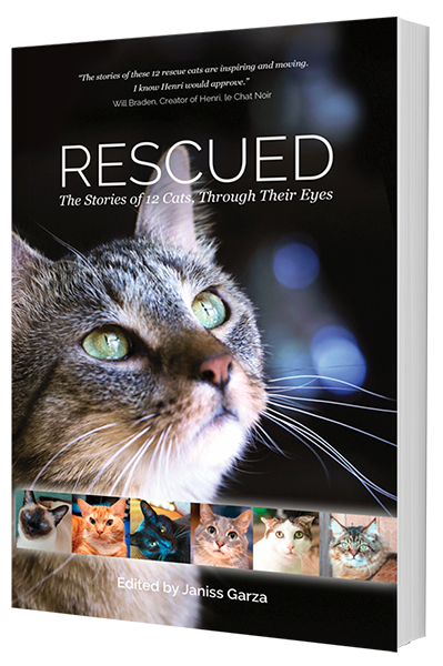 Word from the Author, Rescued Cat Anthology #cats #animalcharity #catrescue #catlover