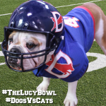 Best Superbowl Commercial #theLucyBowl #MondayMatters