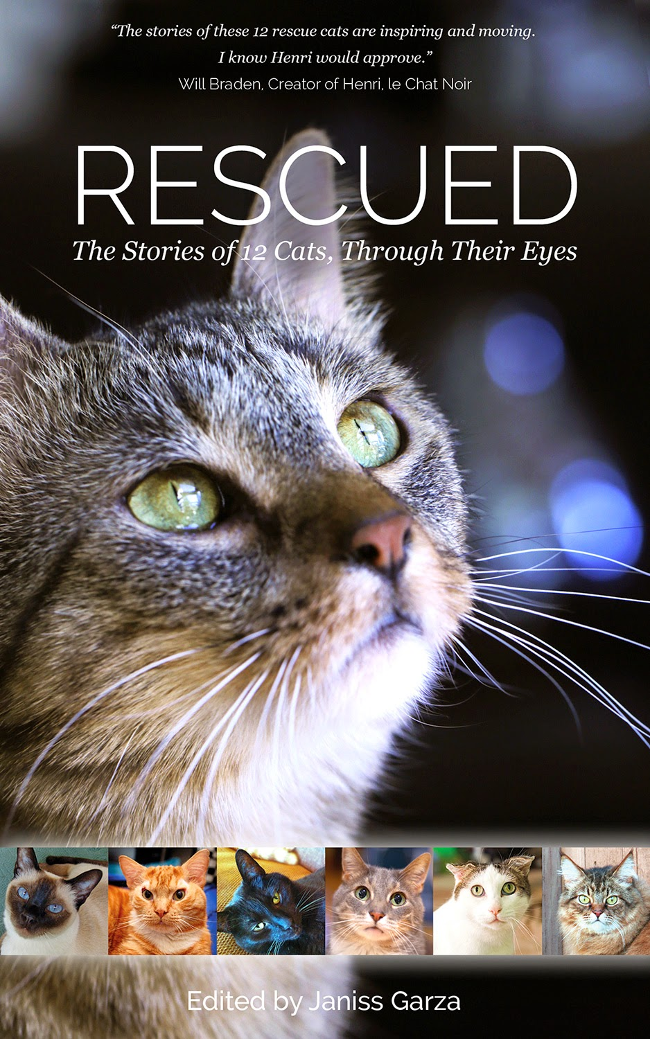 Last Day, Support Authors and Animal Charities