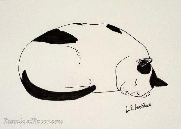 Rocco cat pen and ink illustration by L.E. Masitlock
