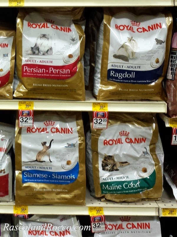 #Siamese Nutrition #RoyalCanin #Cats Are Not One Size Fits All #catfood #cathealth