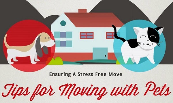 Tips for Stress Free Moving with Pets #pets #animals #moving #petanxiety #pethealth #dogs #cats