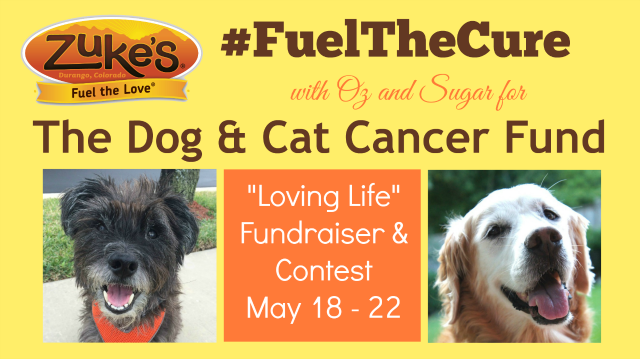 Join the contest and bloghop #fuelthecure #lovinglife #fuelthelove #Zukes #causes