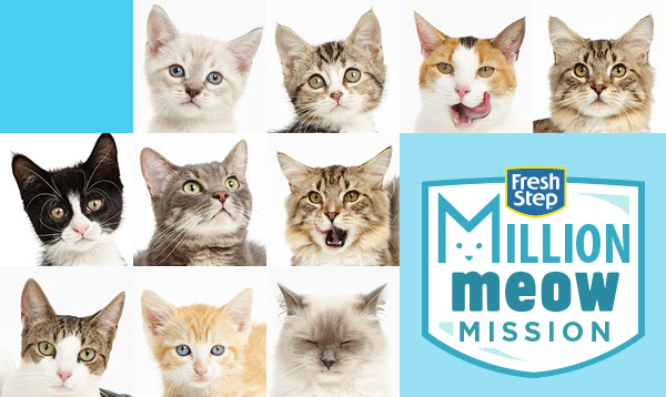 Give to shelter cats with Fresh Step Million Meow Mission #mondaymatters