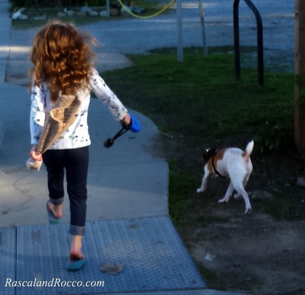Walking the dog is good way to exercise for all #NaturesRecipe @NaturesRecipe @PetSmart #ad