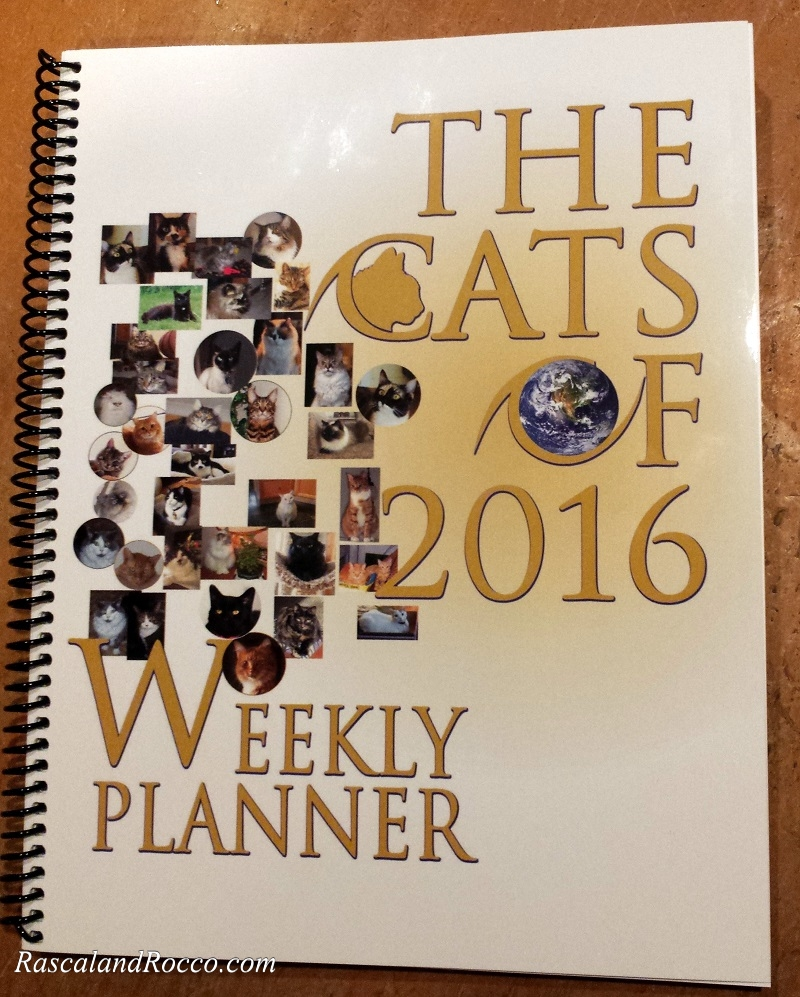 Having a weekly planner you love looking at, like the Cats of 2016, is helpful in getting organized and staying focused on your goals