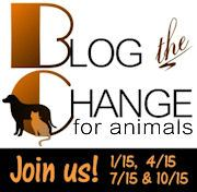 blogging the change for animals. Every person can make a difference. animal causes #BtC4A