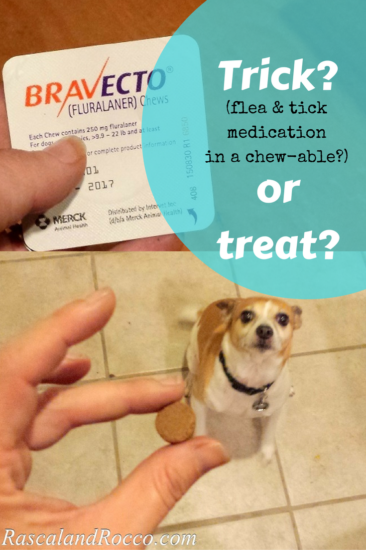 Tick season is here. Are you protected? #12BRAVECTO ad