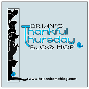 Brian's Home Thankful Thursday Hop