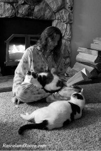 Reading with cats - it is not about you