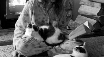 Reading With Cats or trying to