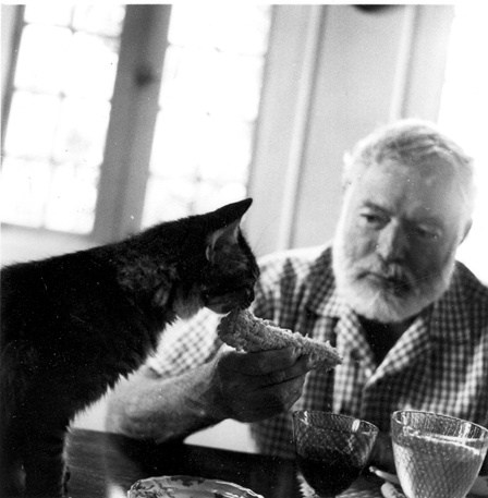 Ernest Hemingway loved cats. Learn more intriguing and weird pet facts at #pawculture @pawculture ad