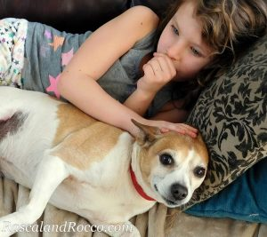 Dogs are snuggly! They make great cuddle companions. So long as they don't have bad breath. Dog biscuits that clean his teeth and freshen dog breath. ad #Nutrivet dog | pets | pet care | animals | companion animal | dog breathe | dog treats