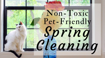 Non-Toxic Pet-Friendly Cleaning for Spring