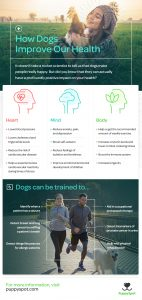 how dogs improve our health infographic