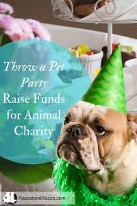 Raise funds for animal charities with a pet party! Throw a Valentines Day party for pets. #mondaymaters dogs cats pet birthday pet party decor party planning