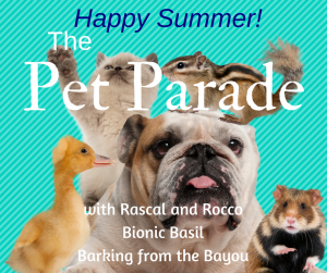 pet parade summer banner