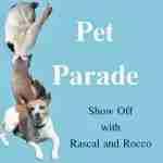 Pet Parade #40