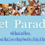 Pet Parade #54 Winner Announced