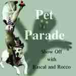 Pet Parade #64 Halloween Edition