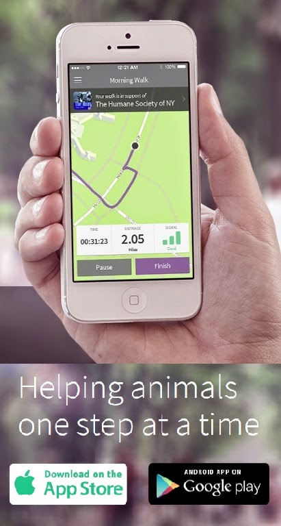 Benefit Animal Rescue with Walking App #MondayMatters