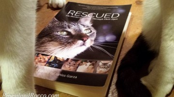 Cat Book Helps Rescues